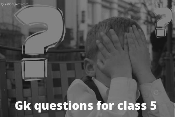 gk questions for class 5