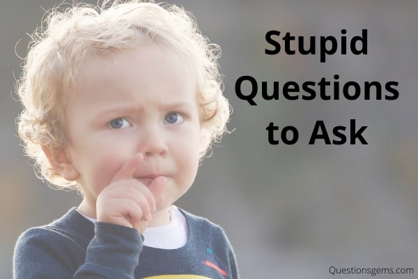 stupid questions to ask